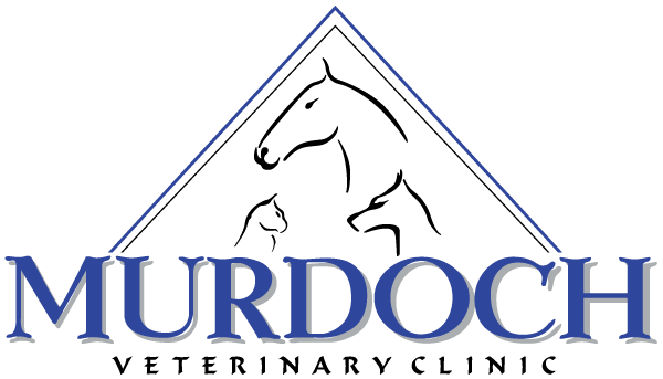 Murdoch Veterinary Clinic